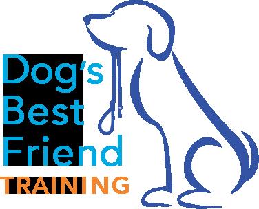 Dog's Best Friend Training